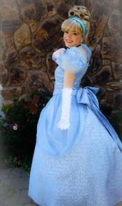 cinderella princess party sacramento